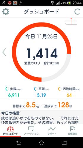 Screenshot_2014-11-23-20-44-45.png